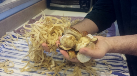 Fist Full of Tagliatelle and Some Porcini Mushrooms